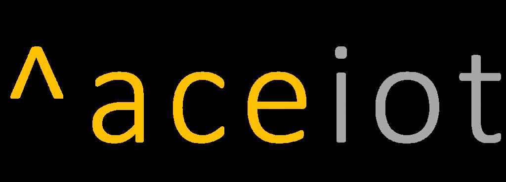 Accelerity Infoventures Inc.